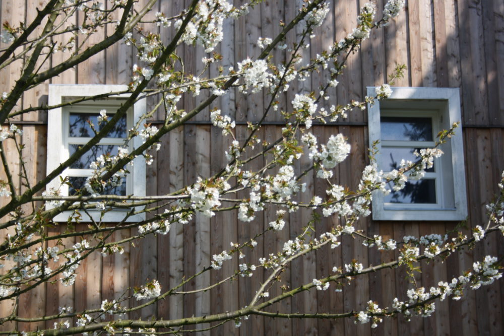 Zeit - Wohnhaussanierung Leichlingen - Impression